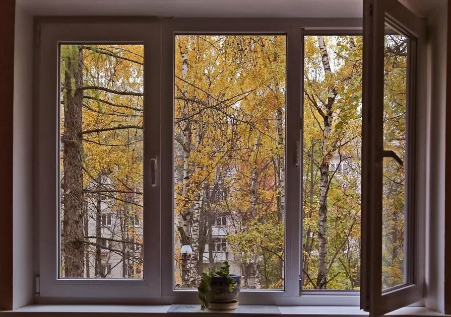 По осени покрываю окна защитным раствром, чтобы грязь и пыль не налипали на них. Мои окна кристально чистые до самой весны