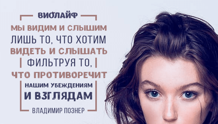 Тринадцать цитат Владимира Познера